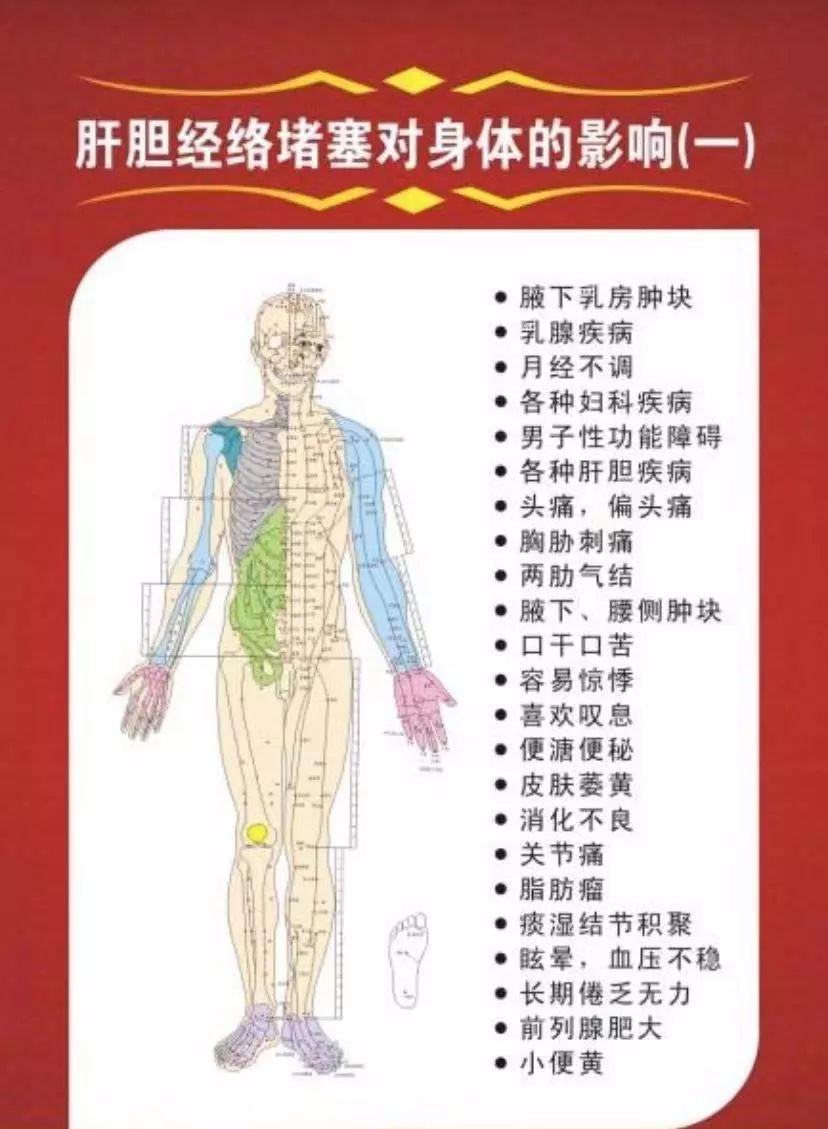 肝胆保养及护理